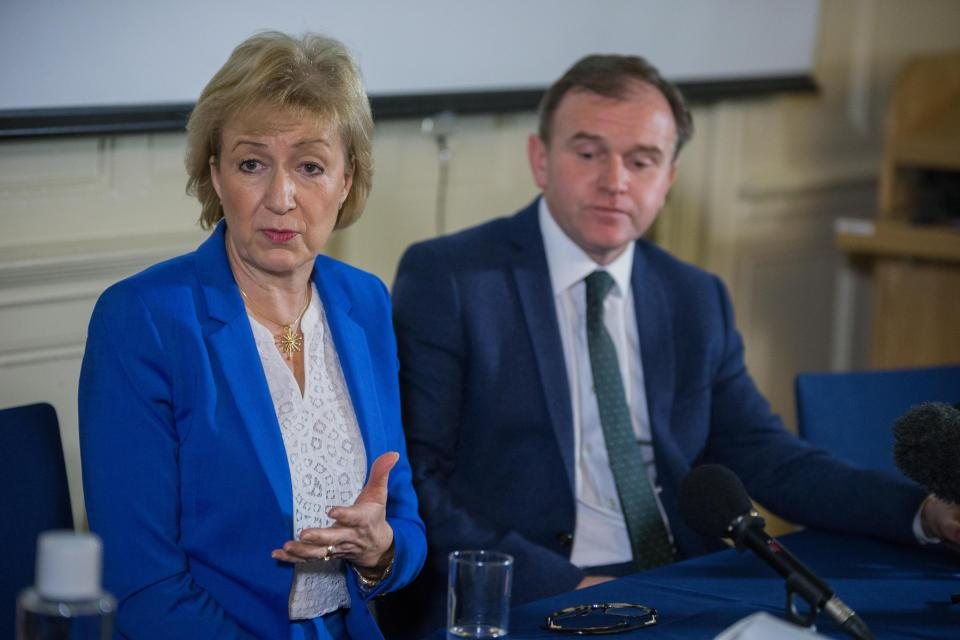 Secretary of State for the Environment and Rural Affairs Andrea Leadsom