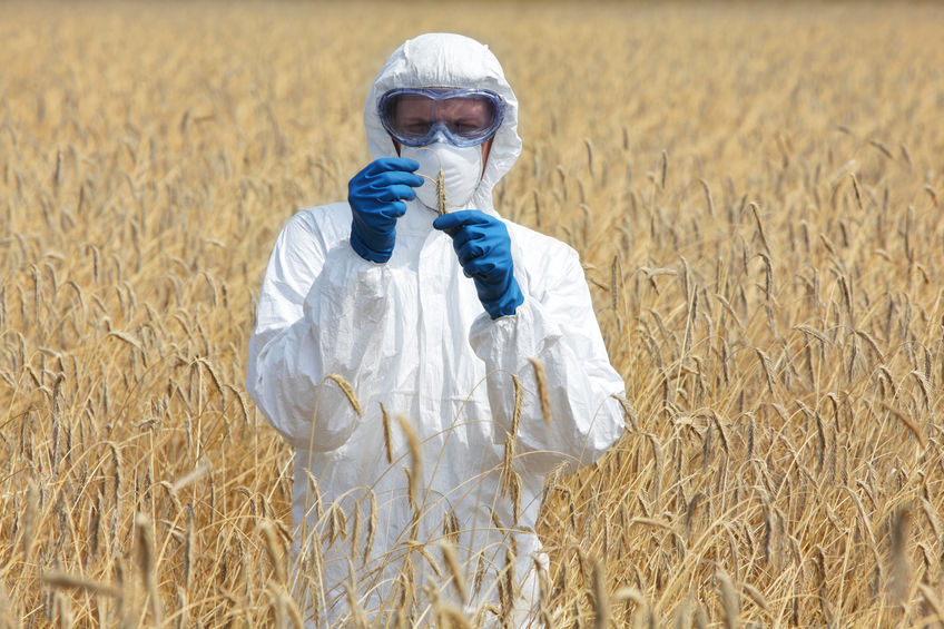 New laboratory opens in Hampshire to help battle crop-killing fungi