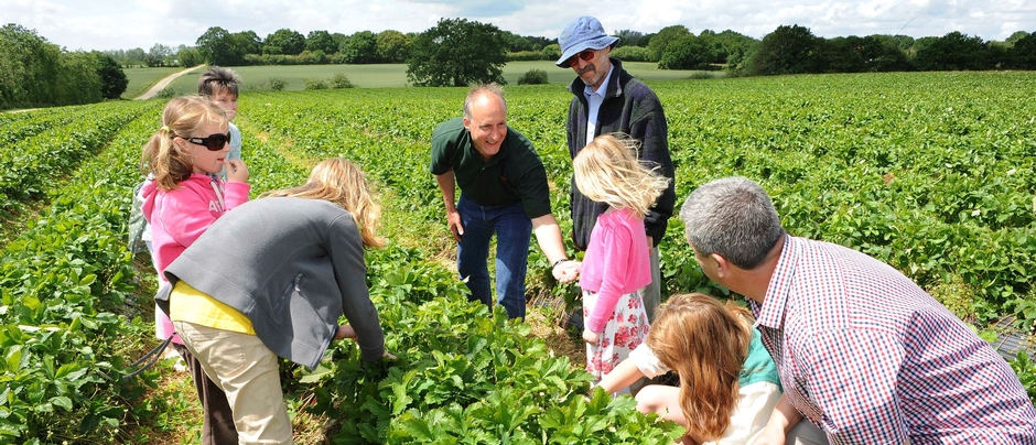 'Proudly show the public what you acheive': Open Farm Sunday 2017 registration opens 1 November
