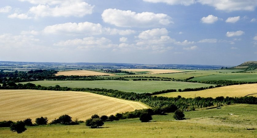 British farmland 'could offer a safe haven for investment'