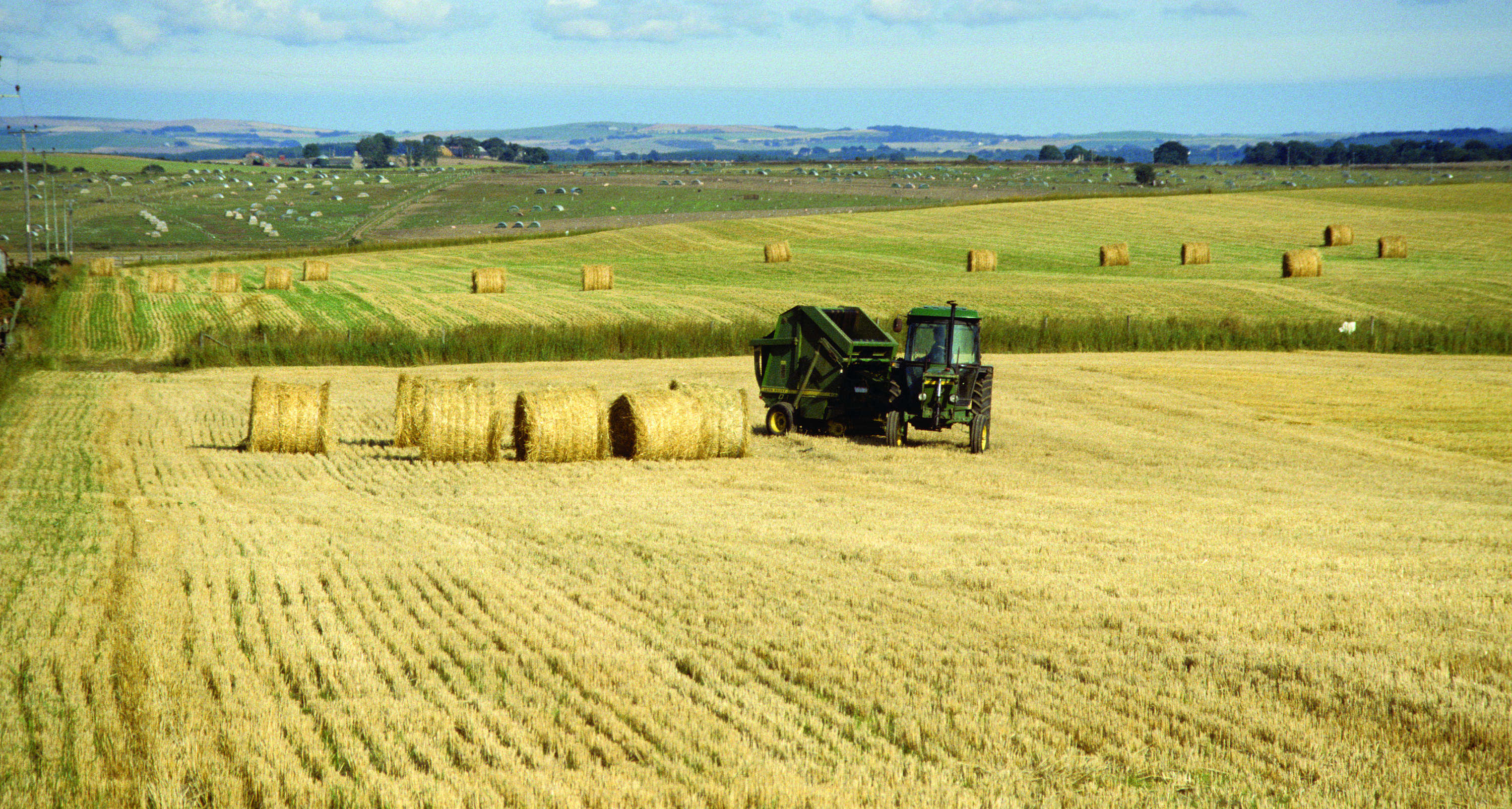 Malting barley industry welcomes news of Scottish whisky exports growth