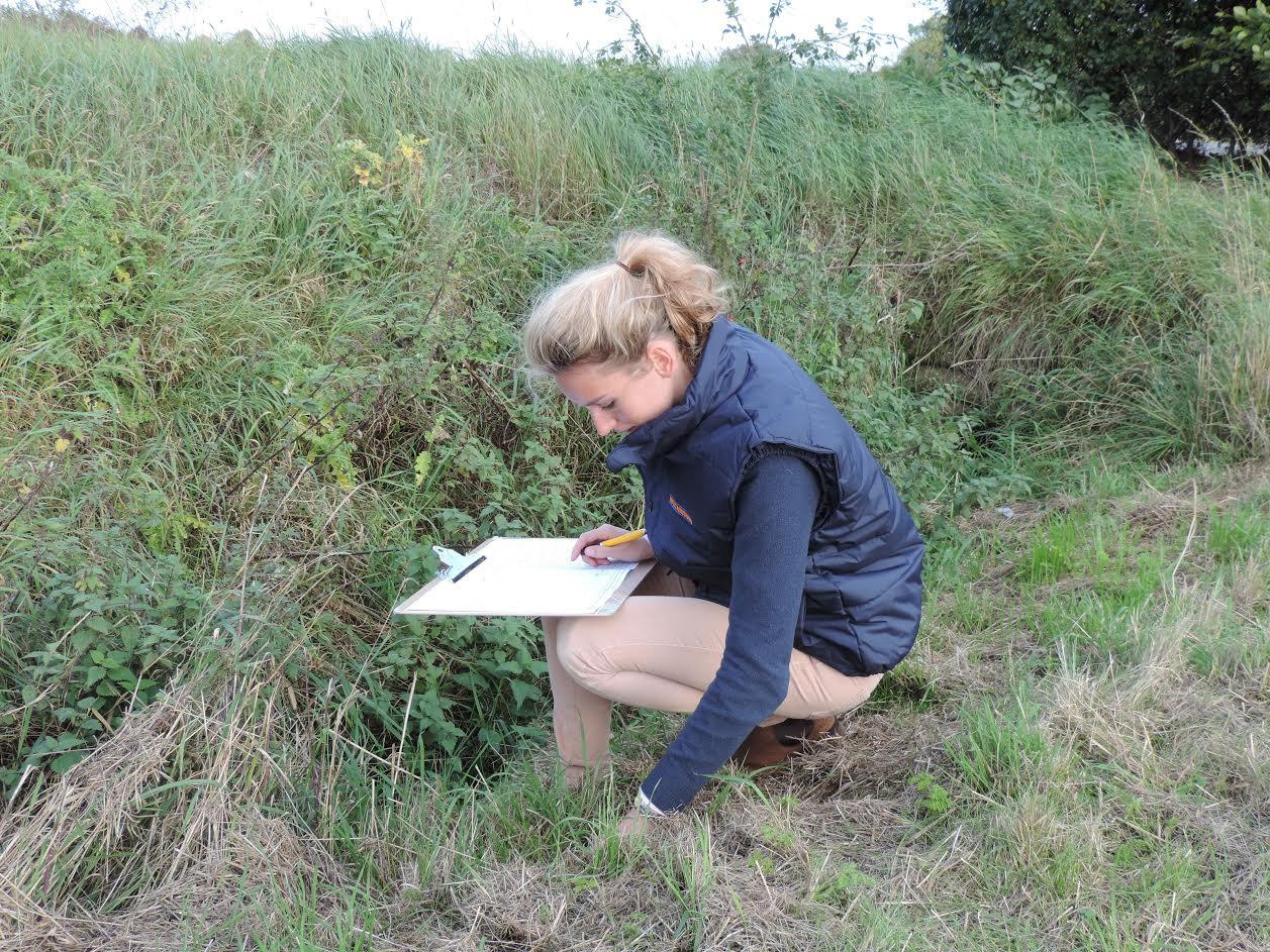 Surveying flora and fauna