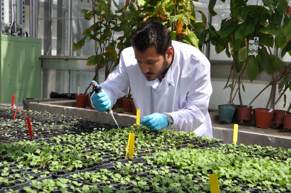 New research project aims to reduce herbicide inputs in weed control by 95 per cent