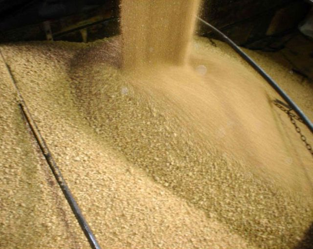 The Timbúes facility in Argentina is currently crushing more than 21,000 tonnes of soya beans per day