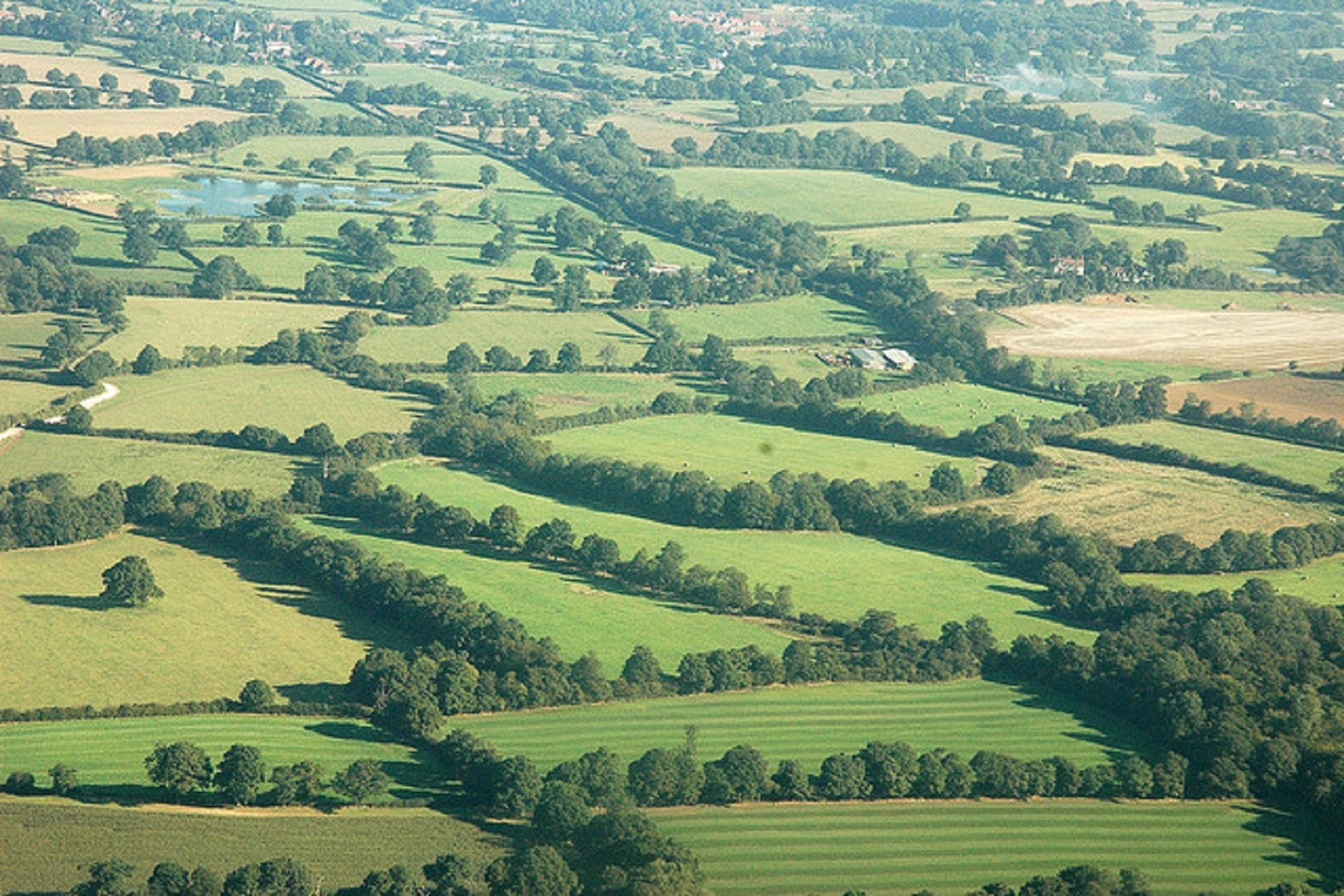 Farmers and environment to benefit as Ordnance Survey creates new data layer of hedges