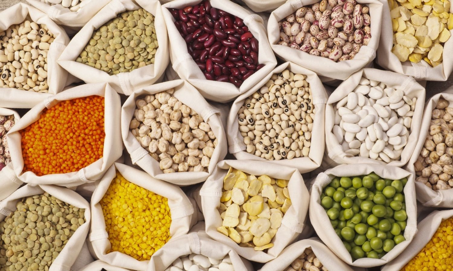The United Nations General Assembly declared 2016 the International Year of Pulses