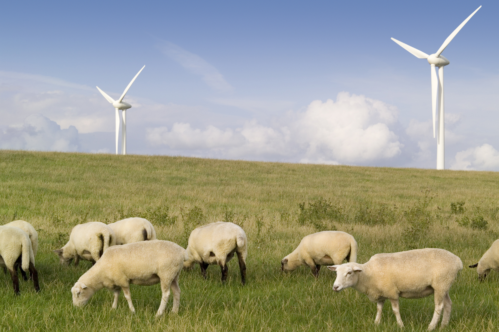 Rural communities to come together to shape own sustainable energy plans