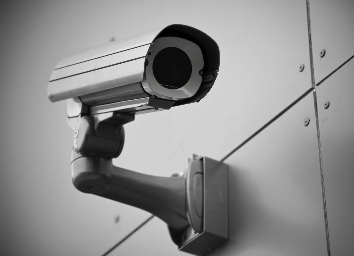 'No sufficient basis' for making CCTV in Welsh abattoirs compulsory