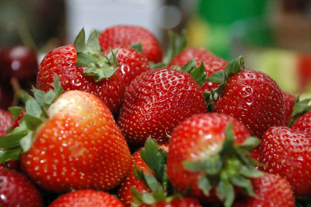 Benefits of breeding: Scientists say larger and tastier strawberries offer 20 per cent saving on labour