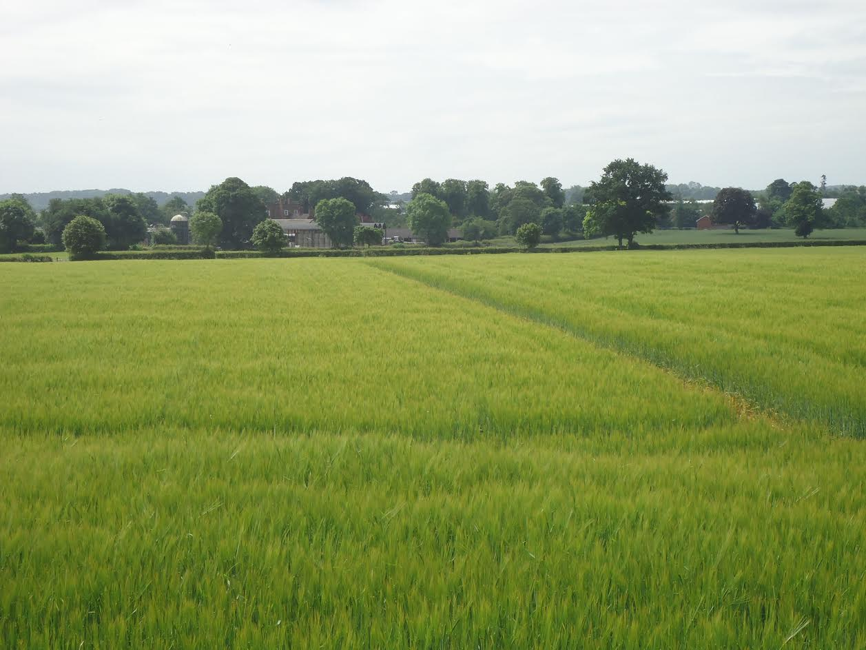 West Midlands arable and pastureland on offer at £1.65 million