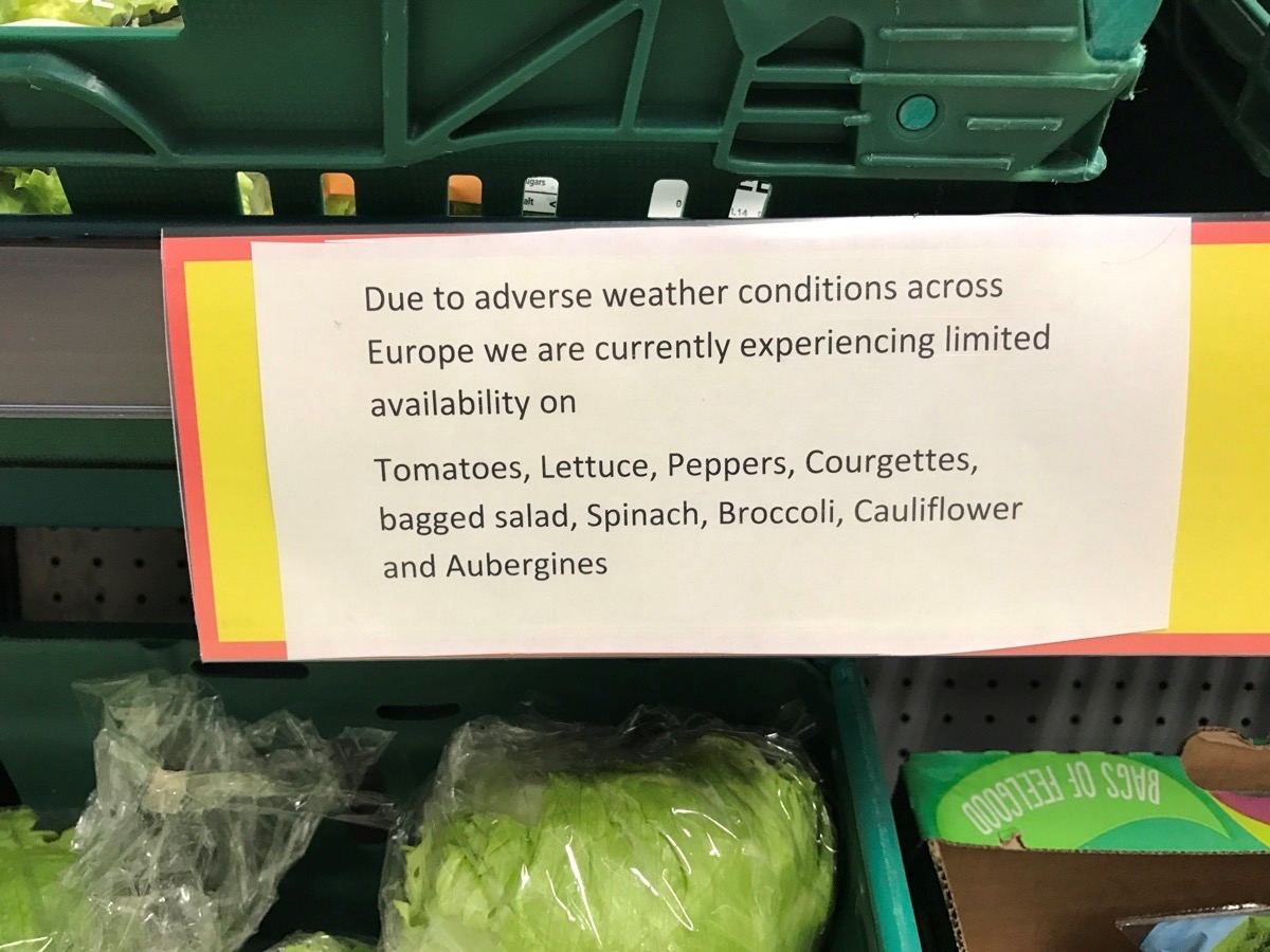 UK supermarkets ration vegetables as bad weather hits supplies