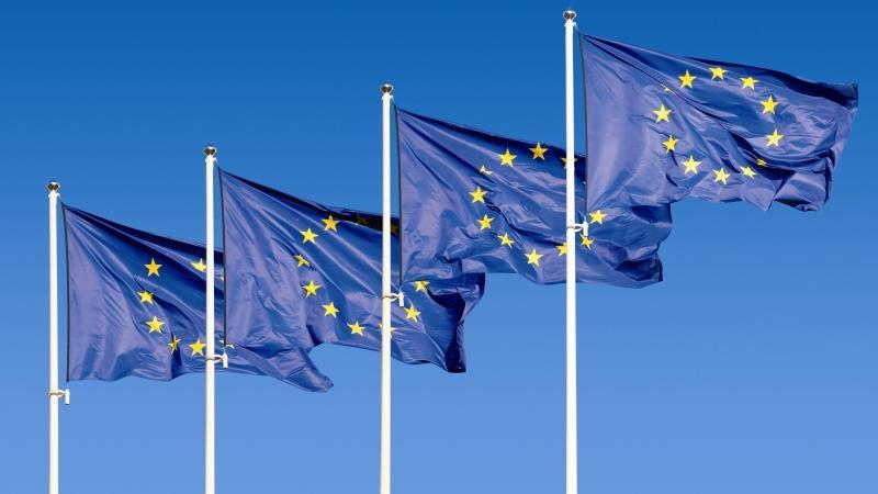 EU seeks to reform farm subsidy programme amid criticism