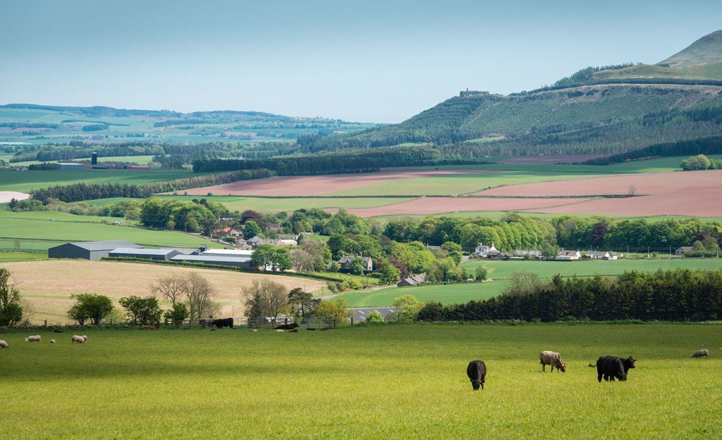 UK food sector should invest in environmental health of farmland they depend on, Thinktank says