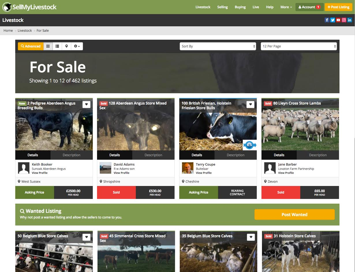 Online livestock marketplace SellMyLivestock records best ever figures
