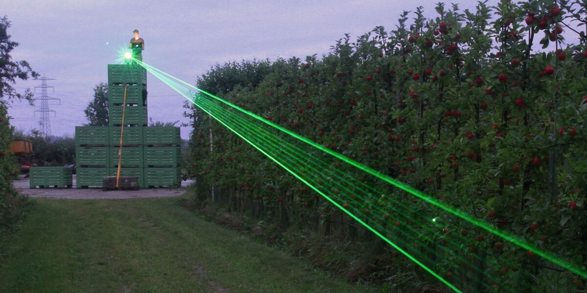 Farm installs lasers to keep poultry chickens safe from avian bird flu