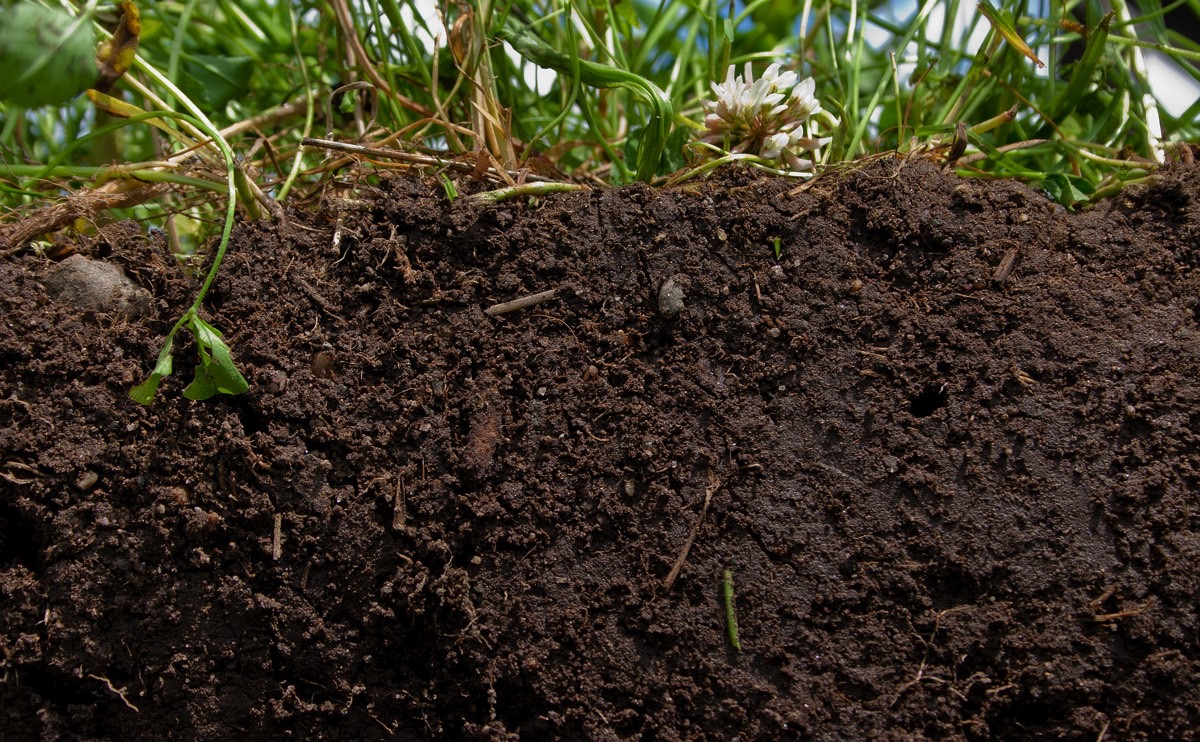 Scientists can create maps and assess overall changes in properties that influence soil fertility and crop yield