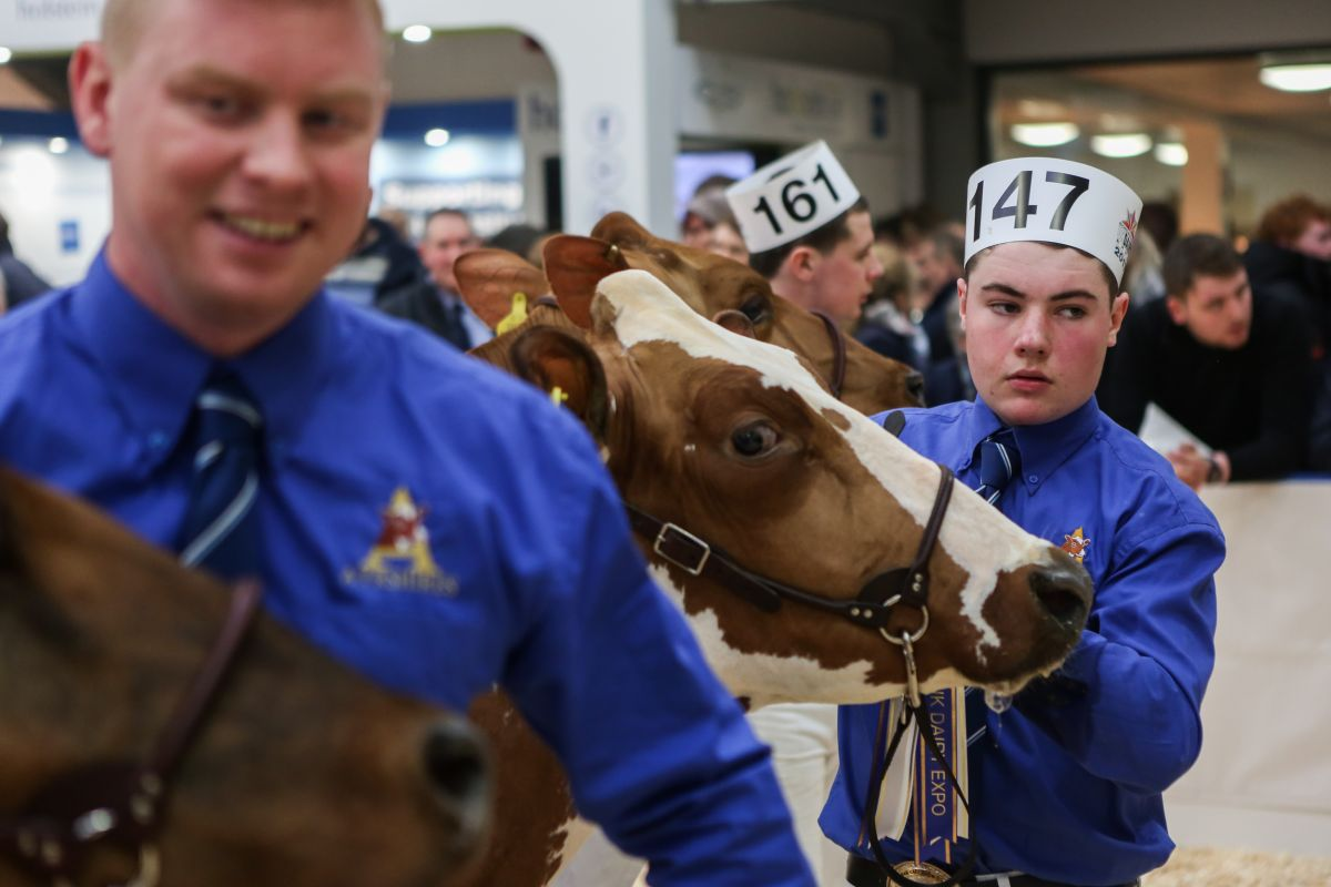Thousands of dairy farmers descend on Carlisle for UK Dairy Expo