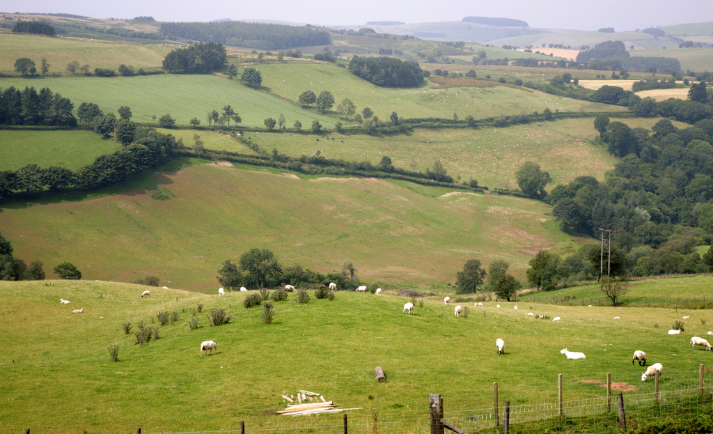 Government secures £223m boost for Wales' rural communities