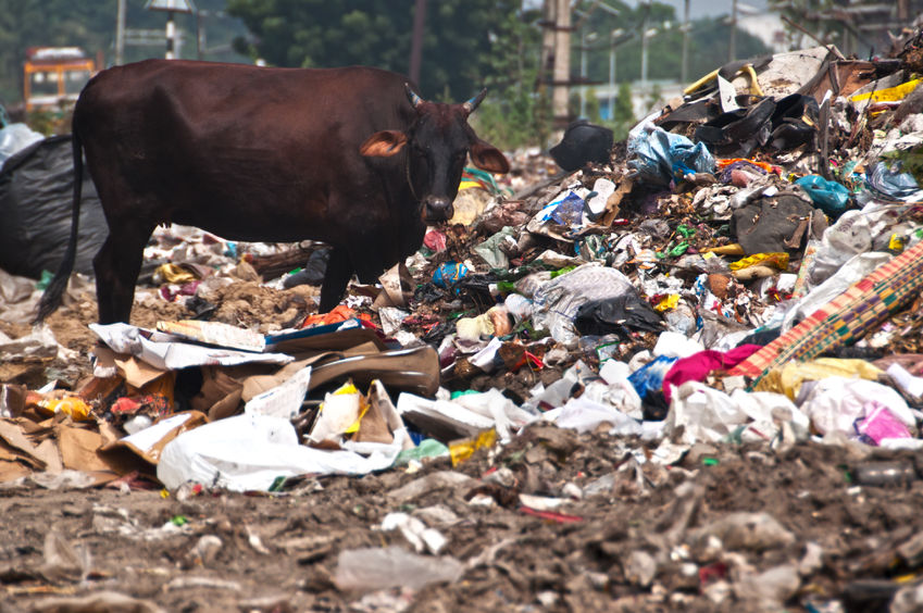 New litter strategy is a 'missed opportunity' to tackle fly tipping, the NFU says