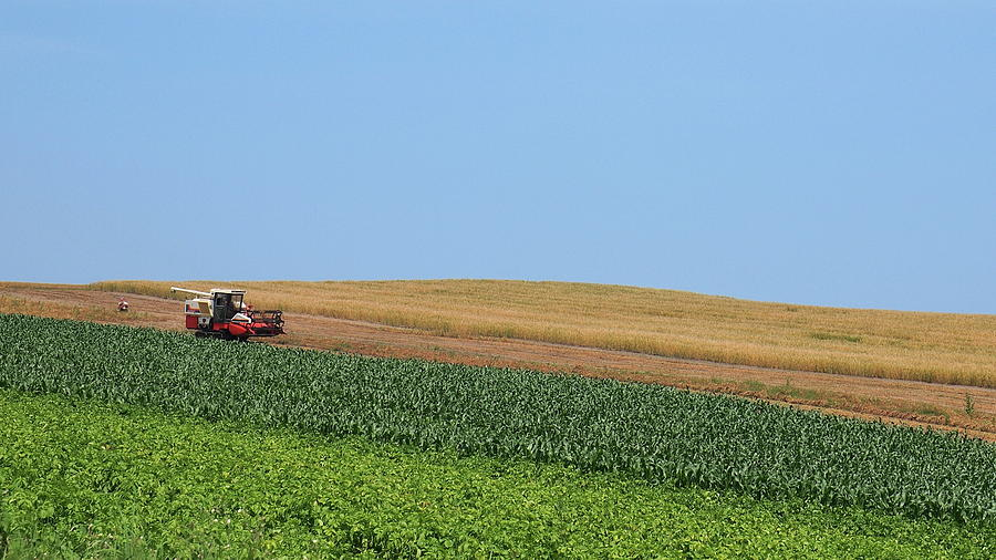 Government criticised for long delays to 25-year-plan for agriculture and environment