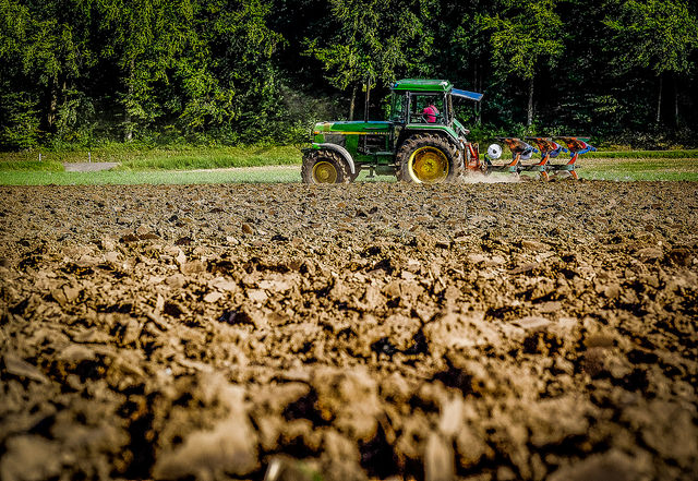 New checks on EU agriculture spending need improvement, say Auditors