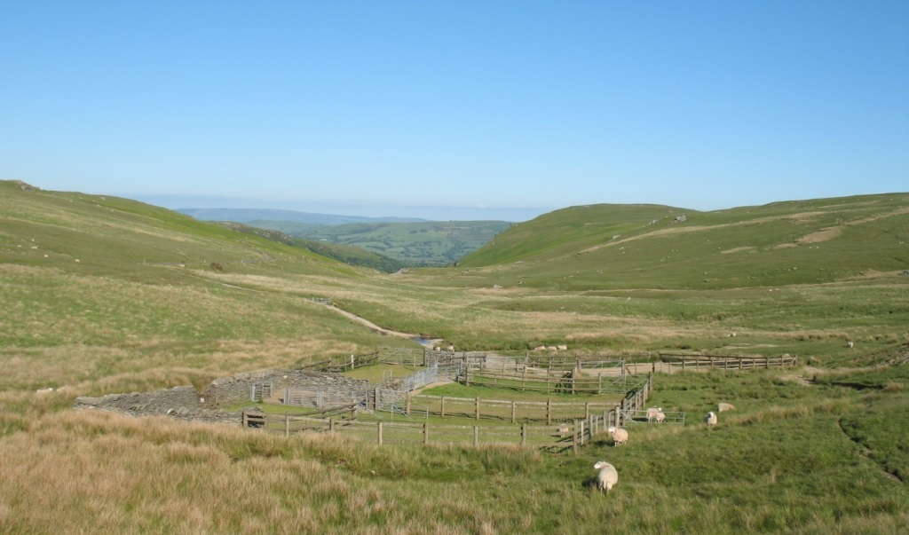 Government gives public new chance to rescue 'lost' commons in Wales