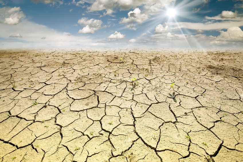 NFU on recent dry weather and what this means for farming