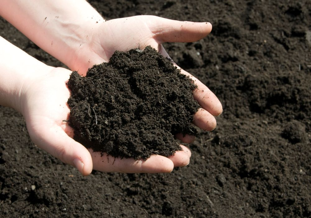 Farmers urged to #SoilMyUndies for soil health