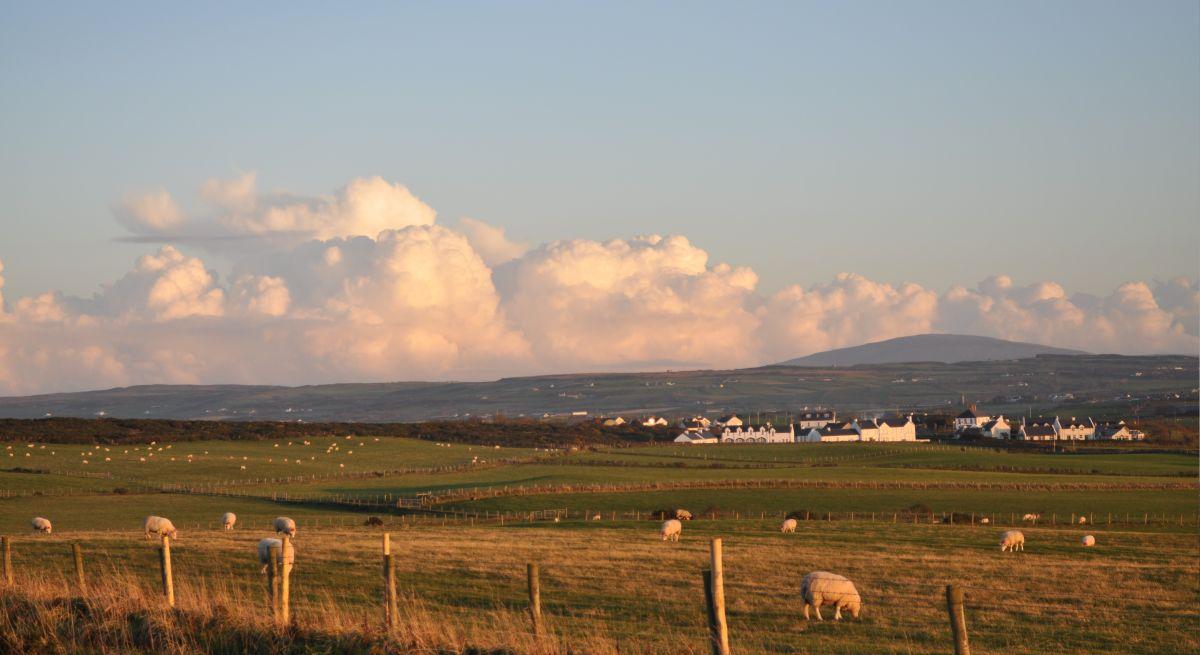 Devolution of Crown Estate creates worry for Scotland's tenant farmers