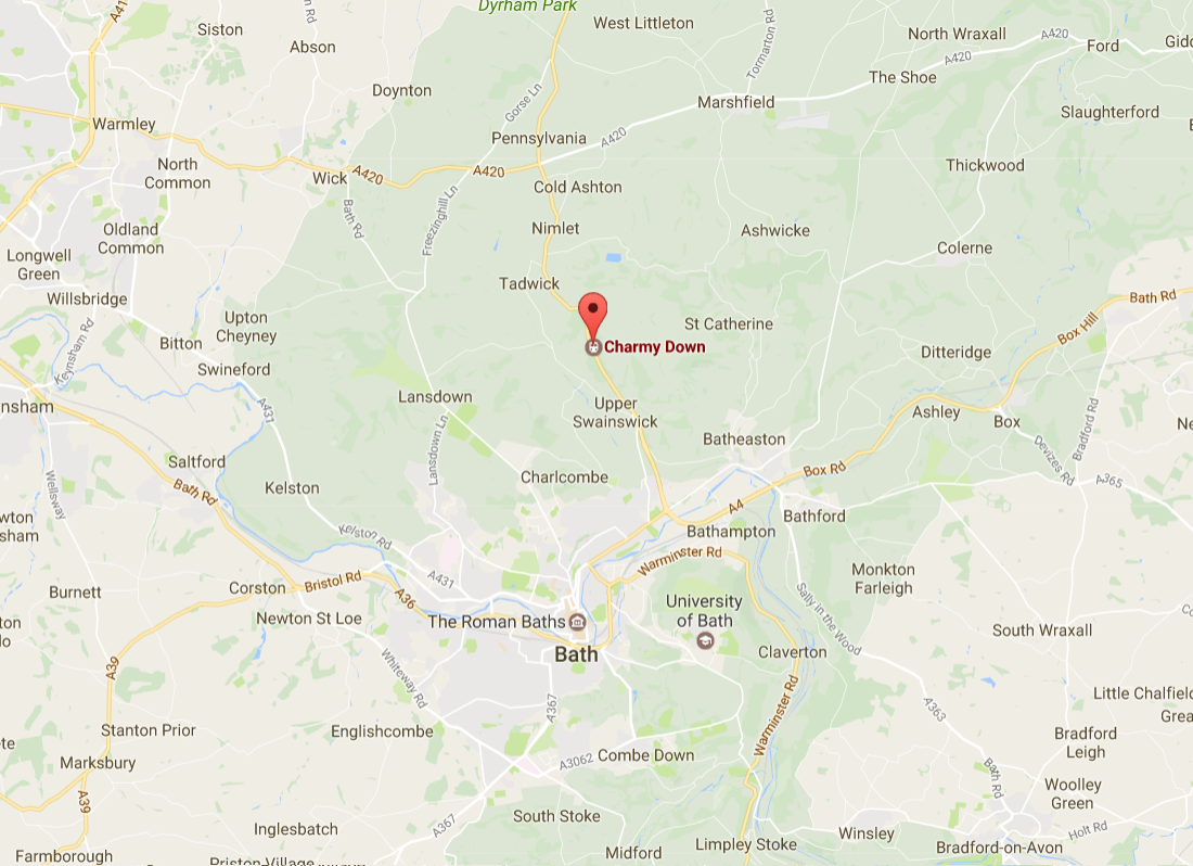 Mutilated cow found with face and tongue removed - police appeal for information