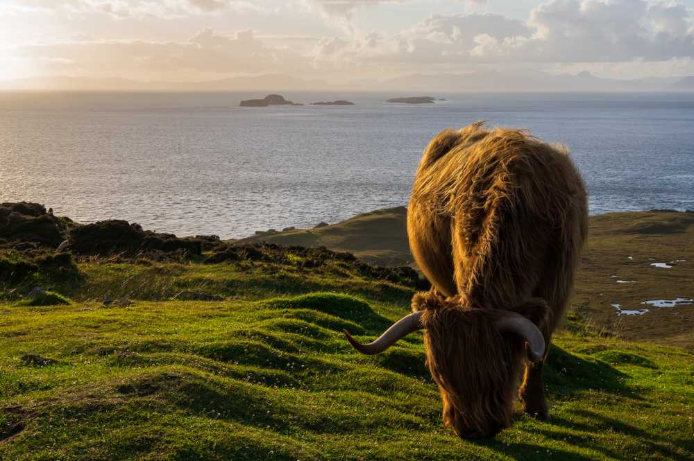 Scottish farmers among those receiving food-project funding boost