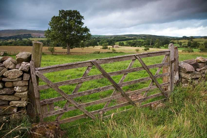 Rural landowners put off building homes in countryside due to 'complex' system