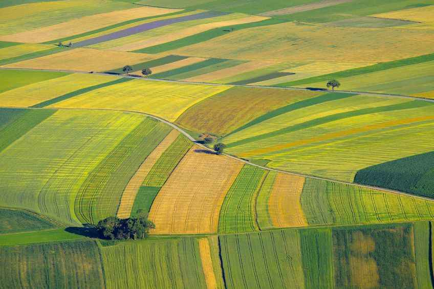 UK farmland prices 'levelling out' after years of decline, figures show