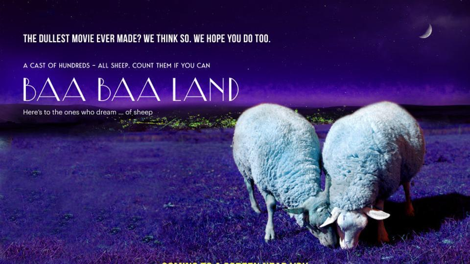 Baa Baa Land has no car-chases, explosions or star names. All it has is sheep and fields
