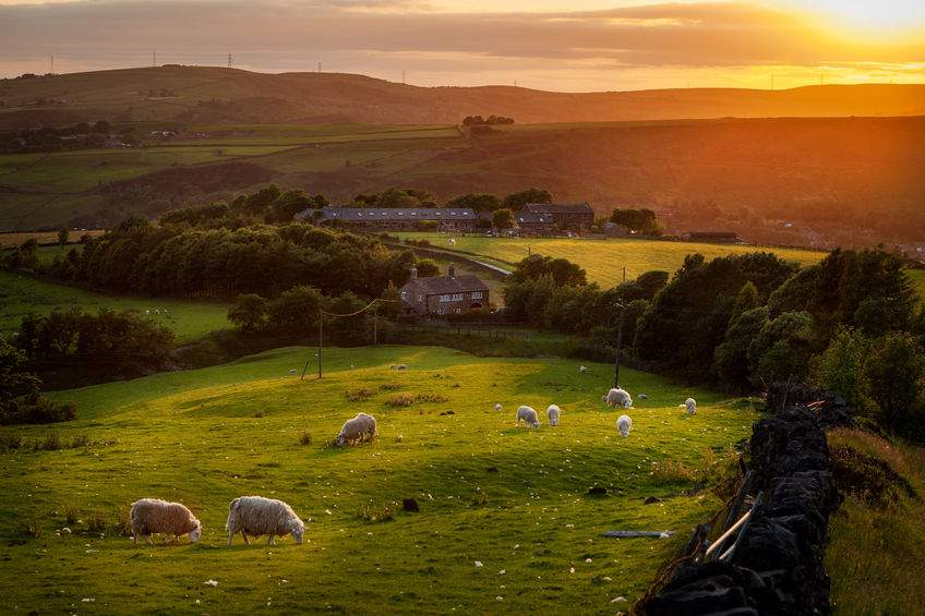 Majority of public think countryside needs more funding