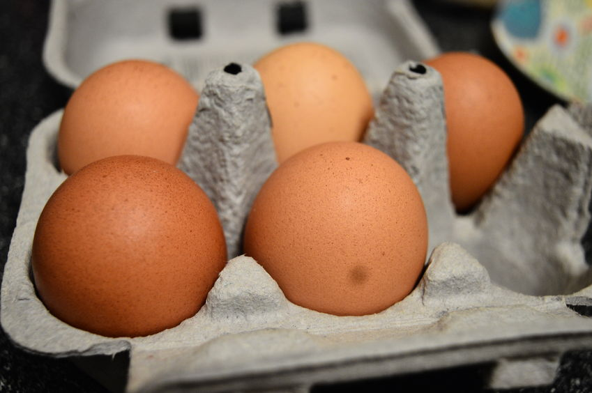 Farm installs vending machine to dispense eggs due to thieves