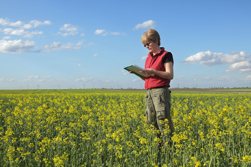 Tech-savvy 'safety champions' can help reduce farm deaths, says agricultural lawyer