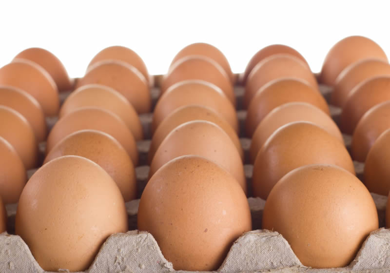 EU Health Commissioner calls for end to 'blaming and shaming' in EU egg crisis