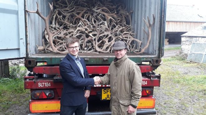 Red deer farmer to supply antlers to Chinese medicine market