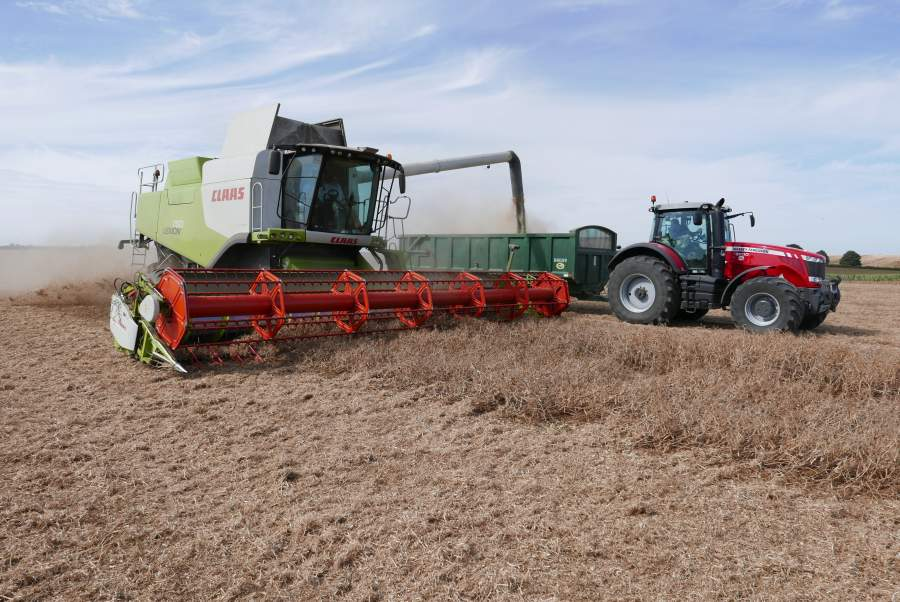 New world record for combined peas set in Lincs