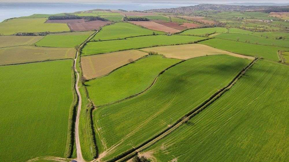 'Talented and ambitious' tenants appointed to run 264-acre Jurassic Coast farm