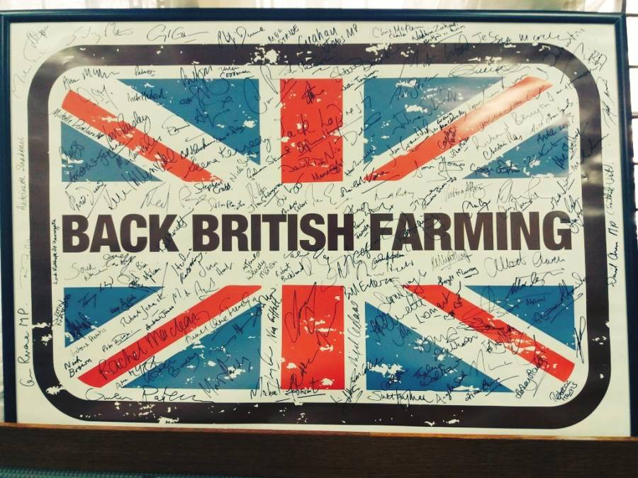 May pledges to make a success of Brexit for Britain's farming industry