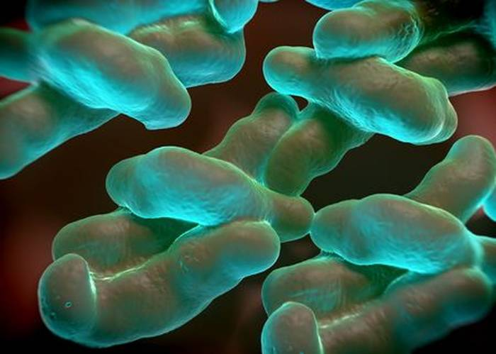 FSA drops top nine retailers from annual campylobacter survey