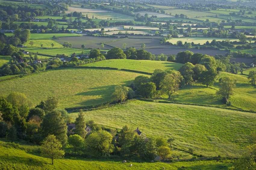 Government urged not to put rural economy at disadvantage with 25-year environment plan