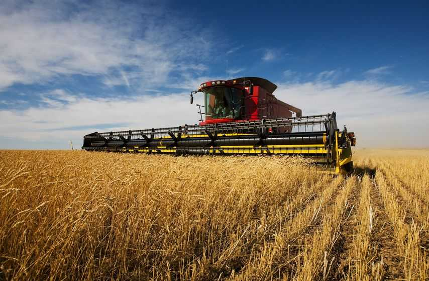 Mixed harvest results shows need for better arable productivity, NFU says