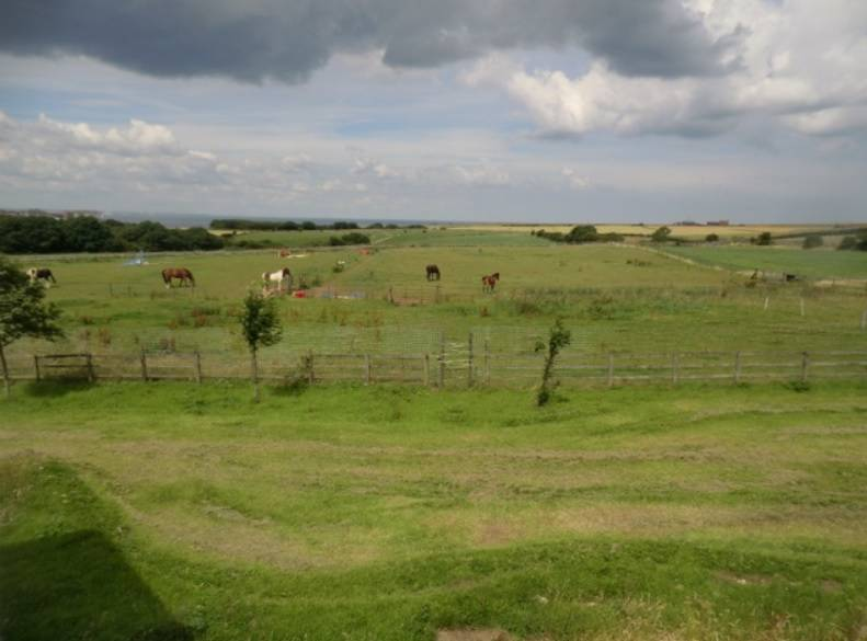 Farmer raffles 18.6-acre £1.3m North Yorkshire farm for just £50