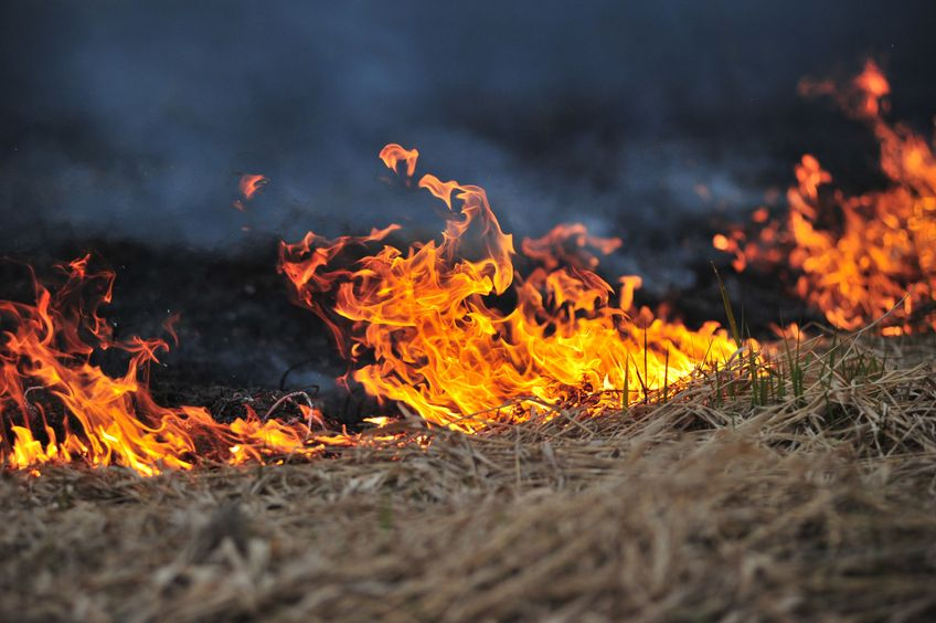 Huge fire engulfs 700 hay bales on Scottish farm
