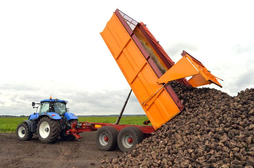Cashflow and profitability problems led to sugar beet contractor's demise