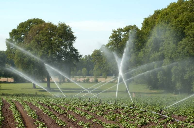 Role of water is 'vital' for food production amid greater risk of scarcity