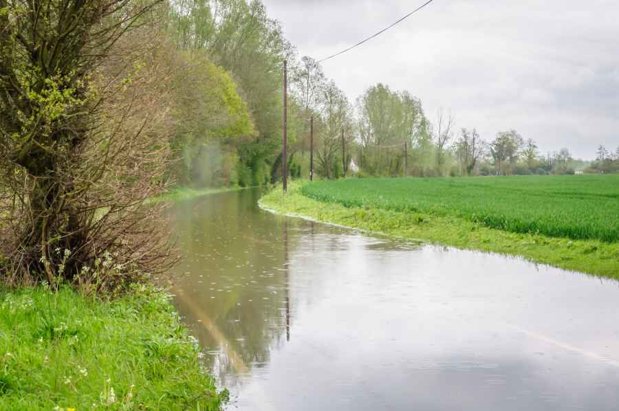 Natural methods could help farmers stop rivers bursting banks miles downstream